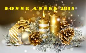 BONNE ANNEE 2015 EN GOLD
